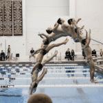 2014 dives